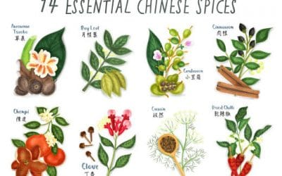 14 Essential Chinese Spices