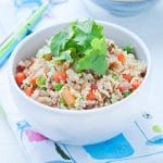 new-year-pork-fried-rice